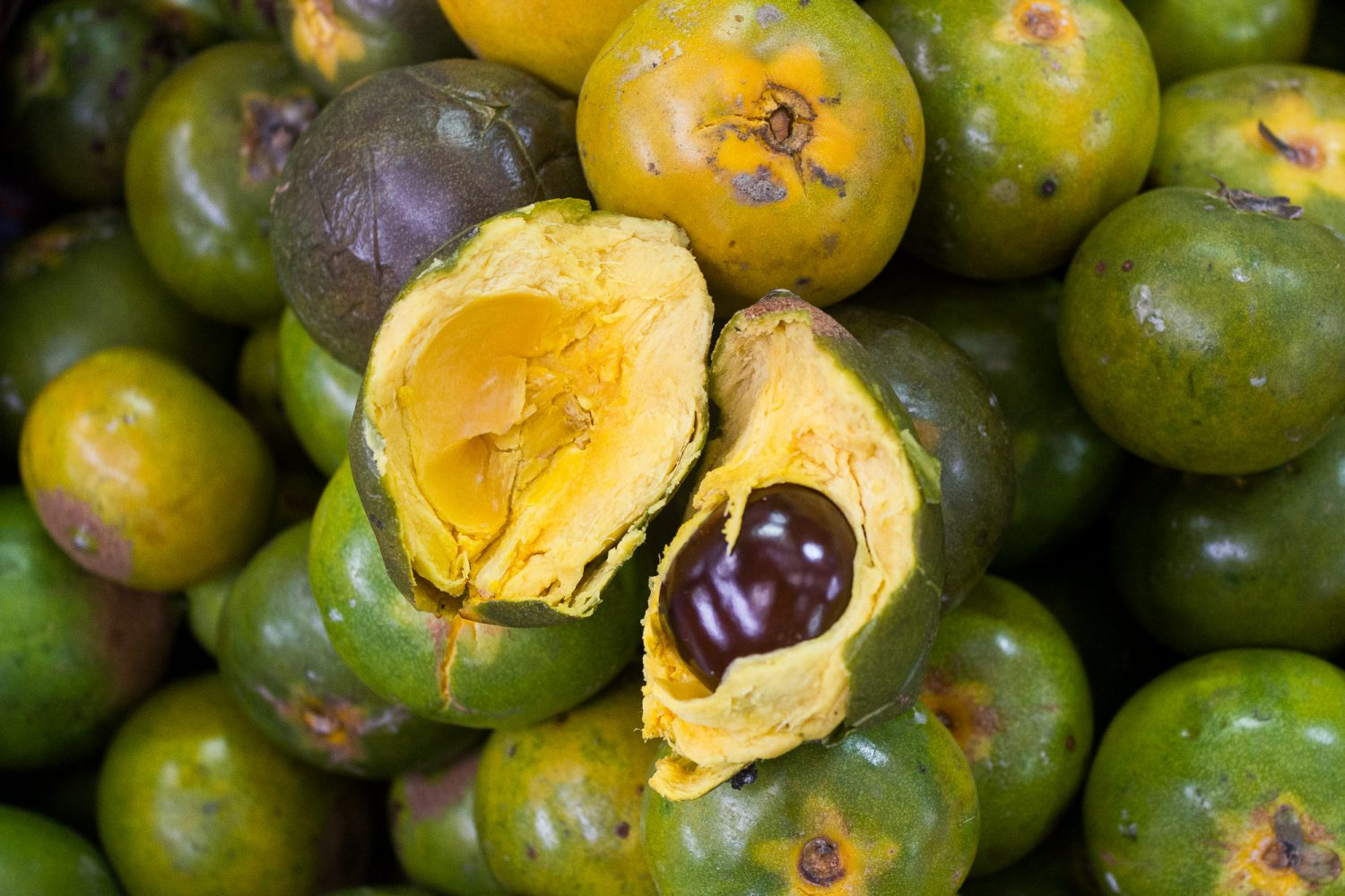Unique Peruvian Fruit_Fruits to try in Peru Lúcuma Lucuma_Eating Fruit in Peru
